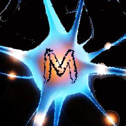 Image Merise - Modélisation des données et des traitements